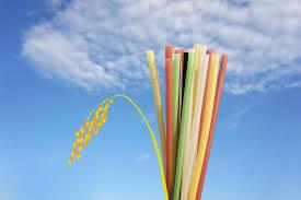 환경오염 줄이기 위해 대체할 수 있는 4가지 물품.jpg