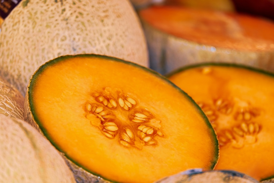 melon-3433835_960_720.jpg