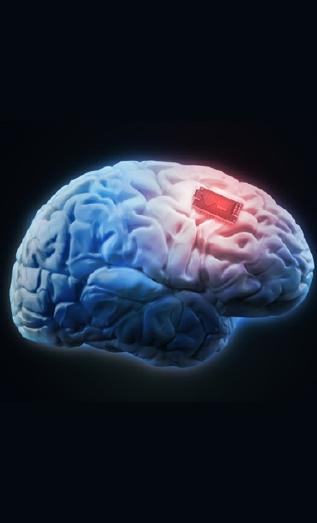 두뇌칩.jpg