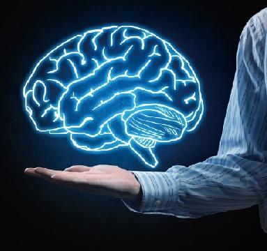 뇌상식.jpg